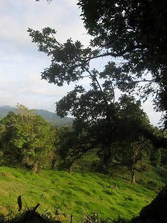 Costa Rica, Poaz
