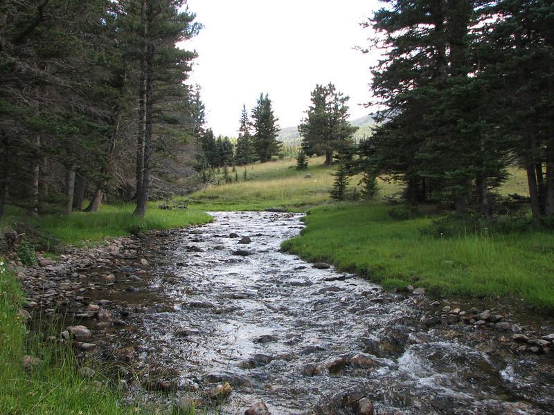 Lemos Creek near our camp.