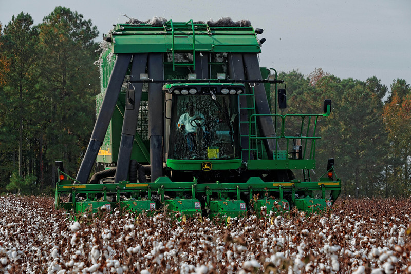 Edwards Cotton Company harvester, Scotland Neck, NC