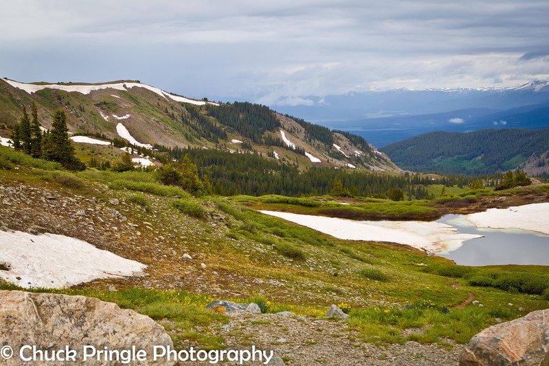 This view is looking west from the top of Cottonwood Pass.