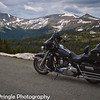 My 2010 HD  parked at Cottonwood Pass.