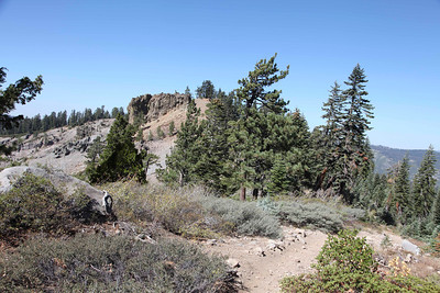 2013 - Western State Trail(Tevis) at Cougar Rock