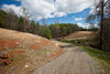 Private road heading back to the parcel.  Gated access provides for total privacy!