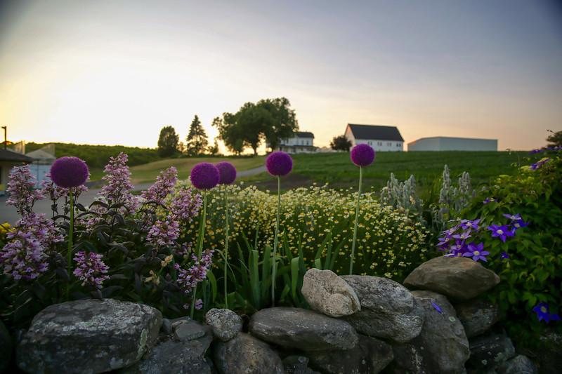 Ferjulian Farm