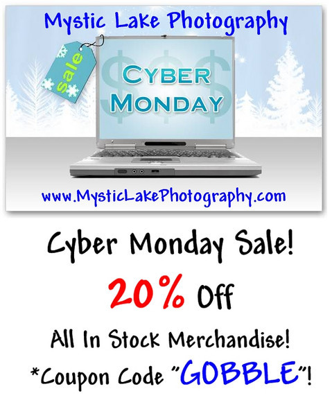 Mystic Lake Photography Coupon
