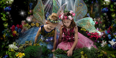 Magical Fairy Sessions