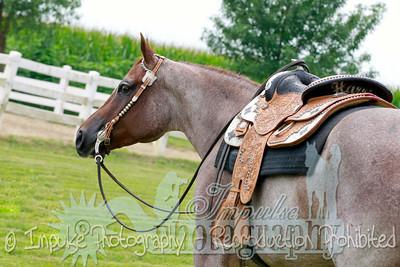 cowboy web-3546