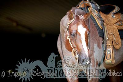cowboy web-3676