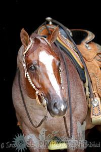 cowboy web-3694