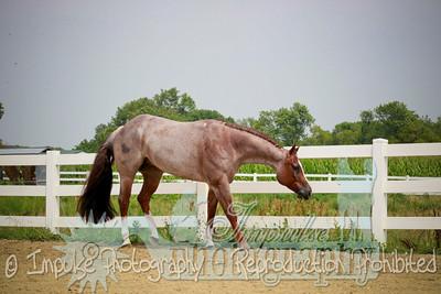 cowboy web-3758