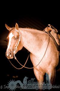cowboy web-3656