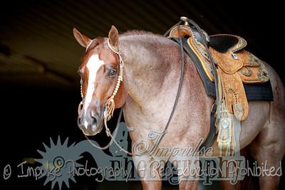 cowboy web-3633