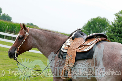 cowboy web-3539