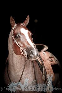 cowboy web-3699
