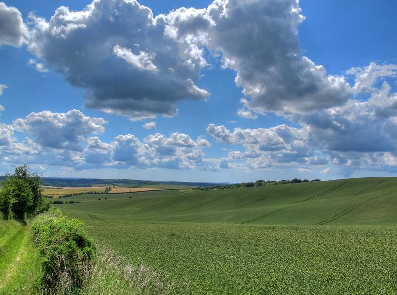 From the footpath near Pentridge looking back towards Cranborne.
