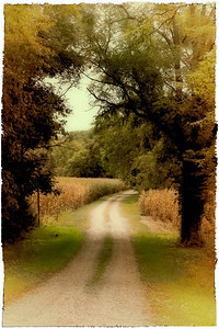 Driveway along the Kokosing Gap Trail outside Mount Vernon, Ohio. (Vintage Polaroid effect)