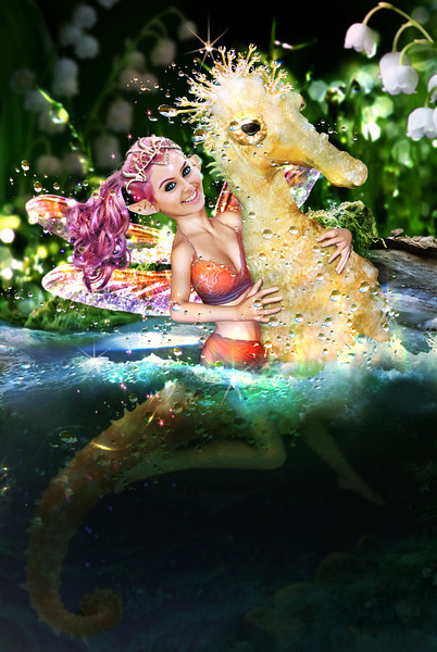 Pixie and the seahorse.