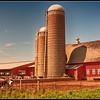 Minnesota Dairy Farm.
