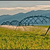 Irrigation system near Polson, Montana.
