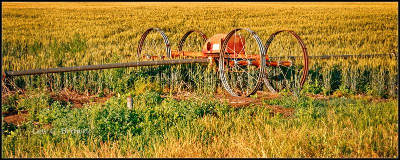Irrigation engine.
