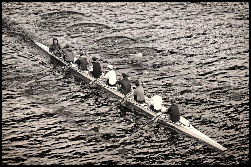 Crew team practicing on Lake Union