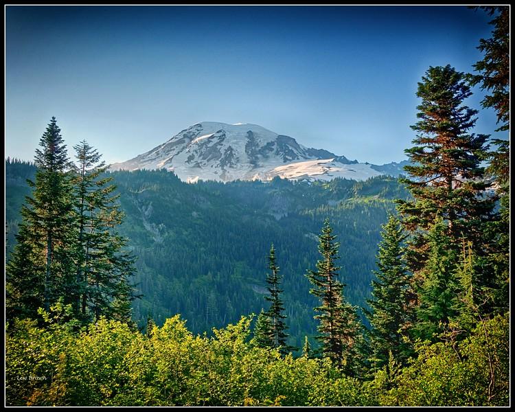 Mt. Rainier View 1