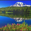 Mt. Rainier view from Reflection Lakes area