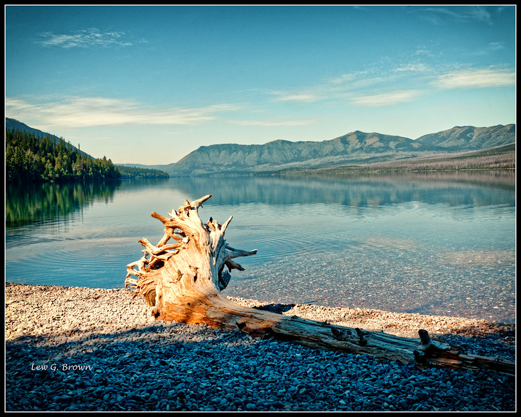 Washed Ashore.  Lake McDonald.  Huckleberry Mountain in background.