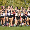 Pendleton Heights leads at the start of the cross country sectional at Pendleton Heights on Tuesday.