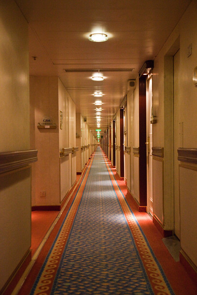 cruise ship.  How many times did I walk this carpet?