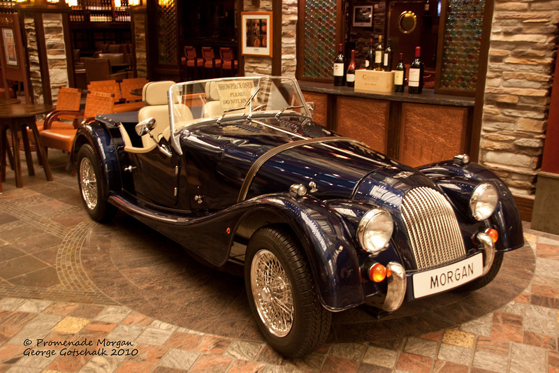 Freedom of the Seas classic Morgan