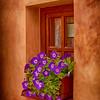 Window Box, Cesky Krumlov.
