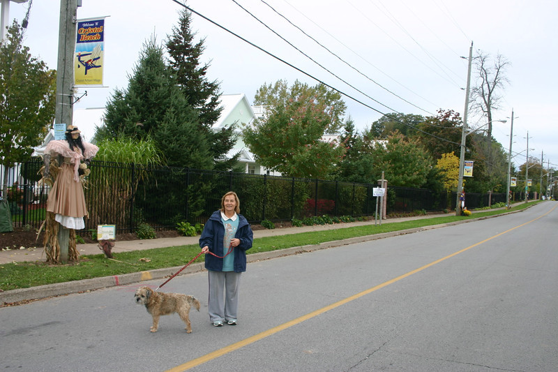 This is Erie Road in Crystal Beach, Ontario.  The Friends of Crystal Beach organized to have about 30 scare crows mounted on electric poles.