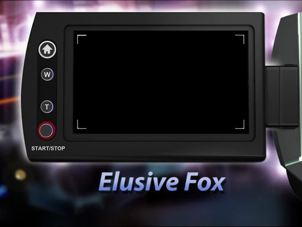 ElusiveFox video edited/extracted for 54 seconds of viewing the fox up close.<br /> This video was edited  with Adobe Premier Elements 10.