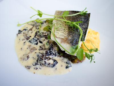 Whitefish & morel stew