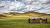 Cabin, Mongolia