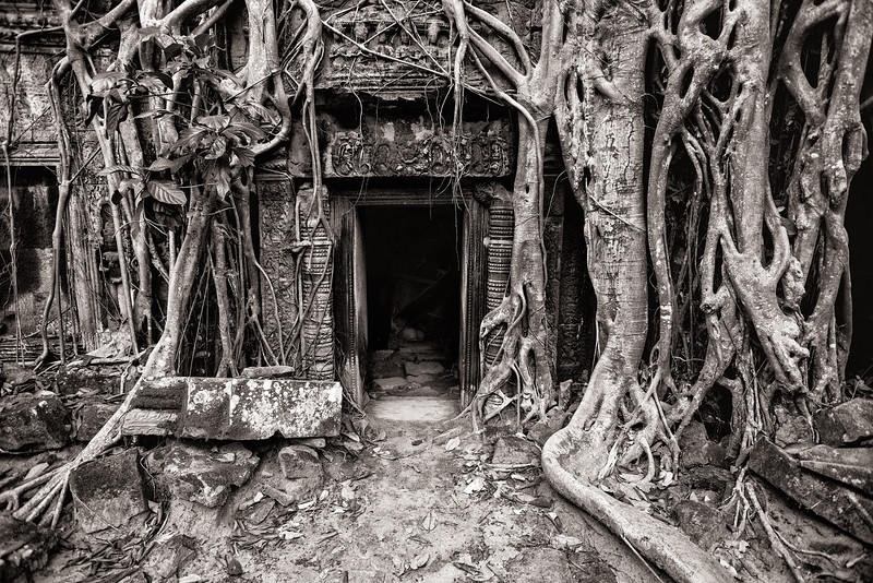 Ta Prohm Temple Entrance, Siem Reap, Cambodia