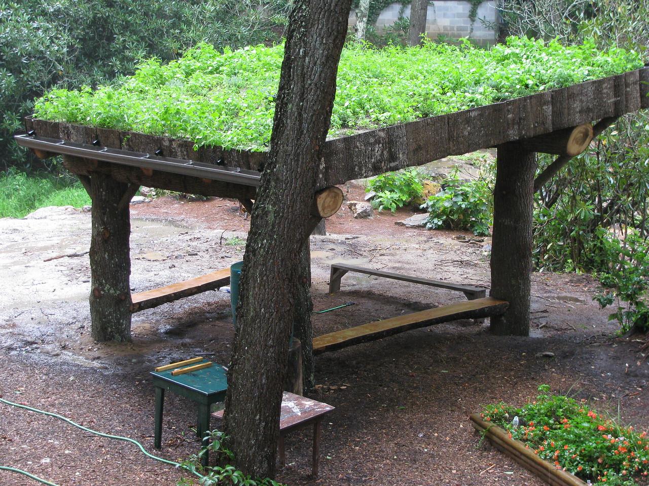 Camp Merrie-Woode Pavilion