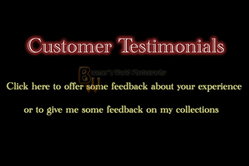 """Please click """"Add Comment"""" below to leave your feedback."""