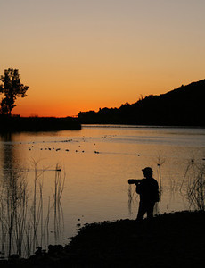Lake Murray San Diego Wildlife Photographer at Sunset