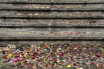 Evidence of a wedding on church steps, Wittenberg, Germany.