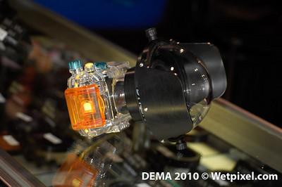 DEMA -0020
