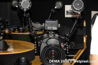 DEMA -0019