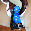 DOUBLE RAINBOW EQUESTRIAN CENTER 3-27-11 : For enhanced viewing click on the style icon and use journal. Thanks for browsing.