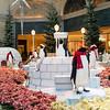 Bellagio_Conservatory_Penguins_low