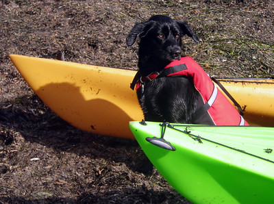 "After capsizing, Libby says, ""No more for today!"""