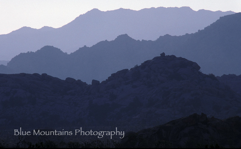 5/15/12. Late afternoon in Joshua Tree National Park.
