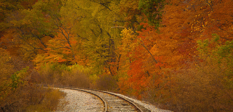 14NOV2012<br /> <br /> Around the Bend<br /> <br /> Some fall foliage....just down from Main St.<br /> <br /> Have a colorful day!