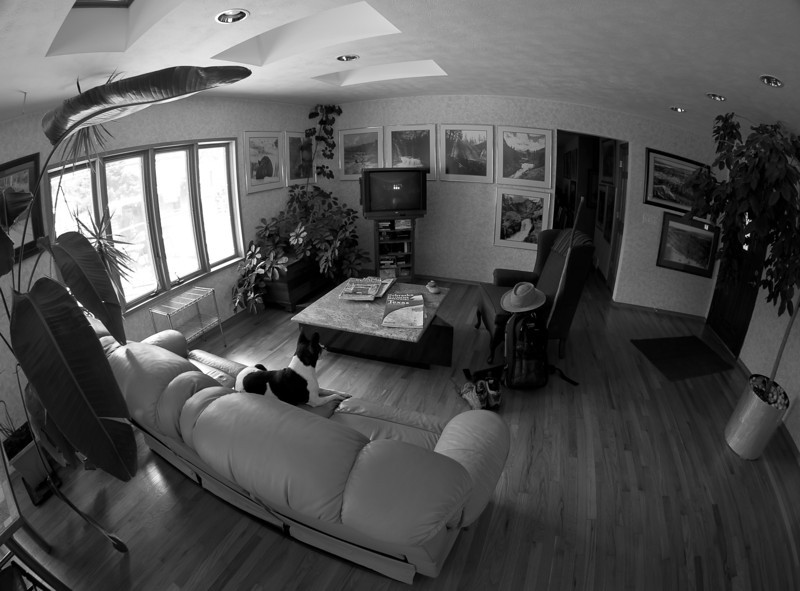 03JULY2012<br /> <br /> Planning the next trip.<br /> <br /> Planning room at World Headquarters... shot with a fisheye lens at 10mm.<br /> <br /> Thanks for the wonderful comments.
