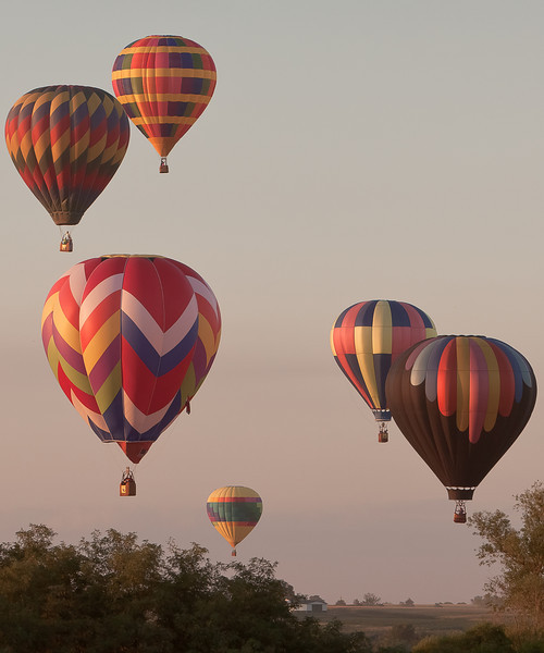 Evening Colors....<br /> <br /> The sunset glistens off the balloon canopies at Indianola Iowa.<br /> <br /> Back from Texas.... It was hot!<br /> <br /> The misty look is just seriously high humidity....I am about a quarter mile from the subject zoomed in to 135mm over the trees. The pilots are a contestant in a contest to knock over a full portacrapper with a person in it.....The way I understood the contest; the balloon pilot and the portacrapper pilot split the money should someone knocks it over.....the door on the crapper is duct taped shut!....thanks Kara.<br /> <br /> See the results tomorrow of this crapper caper!!!<br /> <br /> Leave me a comment please.